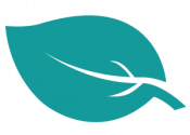 icon leaf teal
